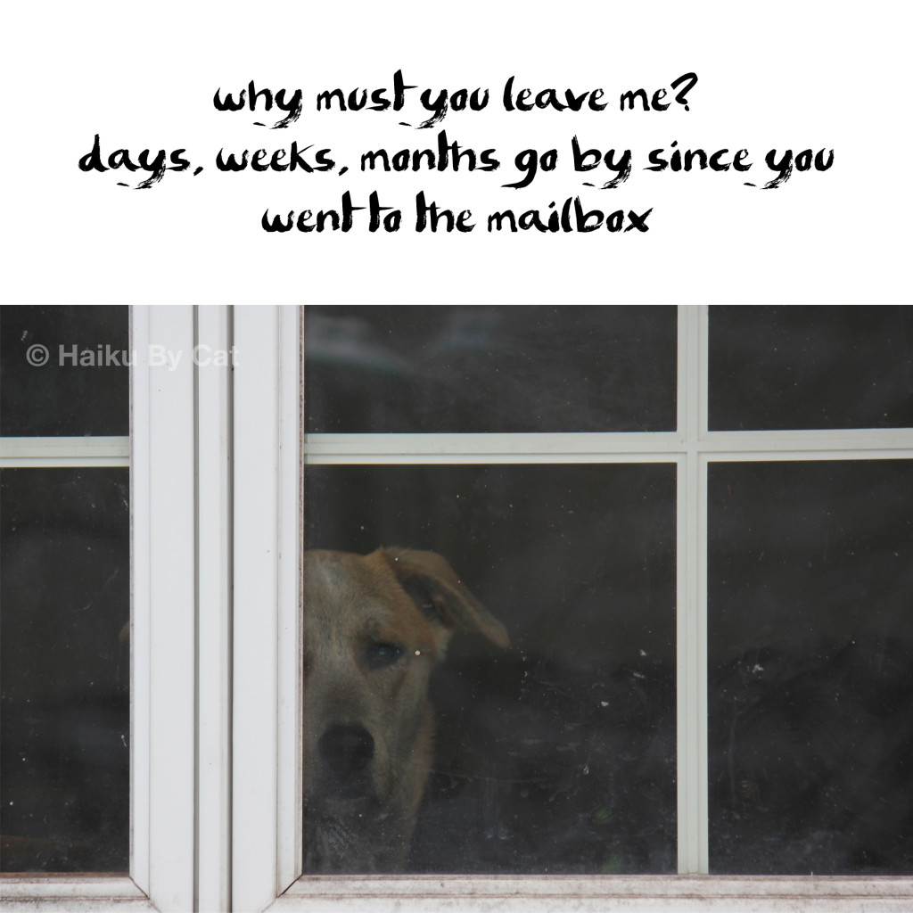why must you leave me? / days, weeks, months go by since you / went to the mailbox